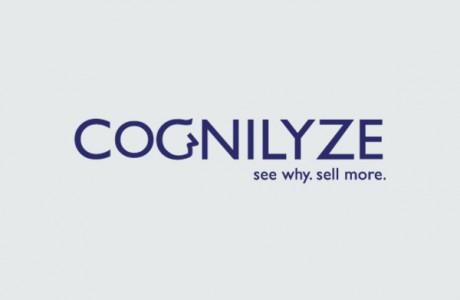 Cognilyze